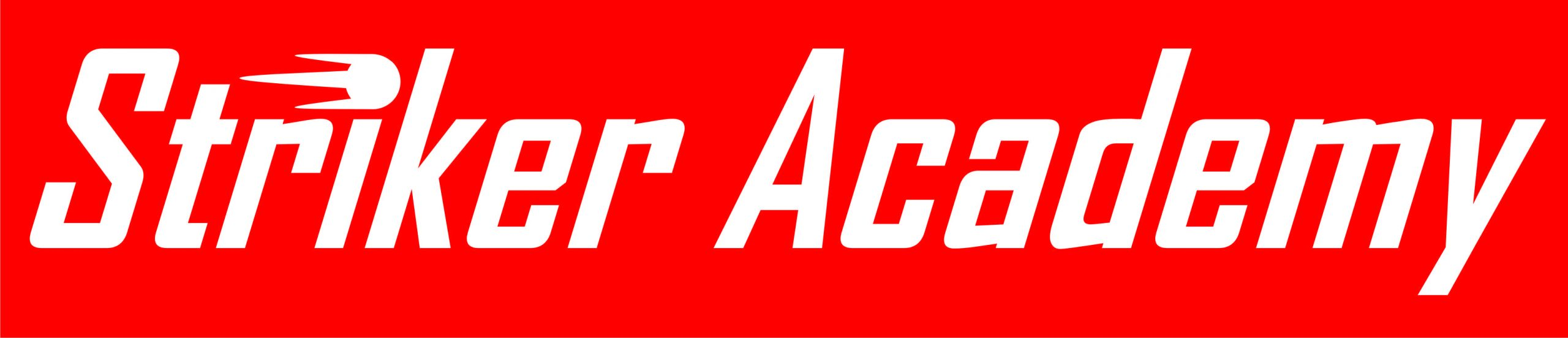 Striker Academy Soccer Schools
